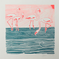 "Collection Animaux : ""Flamants roses"""